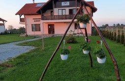 Bed & breakfast near The Károlyi Castle of Carei, Arny Guesthouse