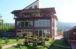 Bed & breakfast Argeș county, Mara B&B