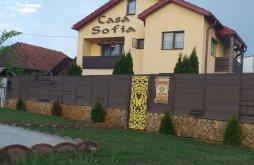 Szállás Scoarța, Sofia Panzió