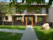 Accommodation Tămașu, Becsali Guesthouse
