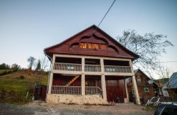 Casă de vacanță Vârtop, Casa Roberta