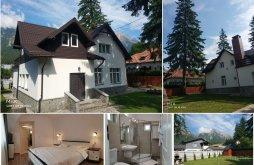 Accommodation Bușteni, Panduri 23 Villa
