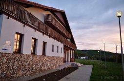Accommodation Ban, Cetate Guesthouse