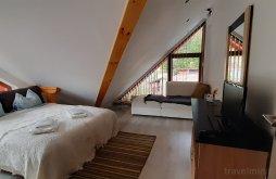 Accommodation Törcsvári szoros, Kalinderu Skier's 19 Apartment