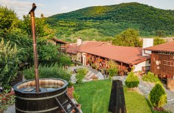 Cazare aproape de Mănăstirea Afteia, Casa Dives - Transylvania
