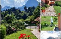 Vacation home near Cantacuzino Castle Bușteni, TEX Guesthouse