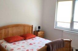 Accommodation Ghemeș, Ale Teo Apartment