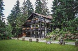 Accommodation Bucin Bogdan Ski Slope, Patrik Guesthouse