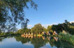 Camping near Stone Ravens Monastery, Păstrăvăria Zăvoi Camping