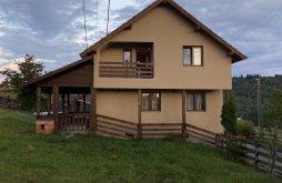 Cabană Bistrița Bârgăului, Cabana Vlad 1