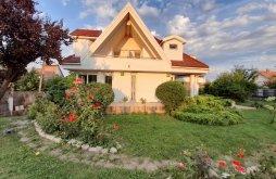 Villa Sepsiszentgyörgy (Sfântu Gheorghe), Lara Panzió