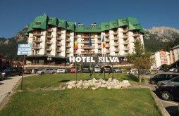 Accommodation Bușteni with Voucher de vacanță, Silva Hotel