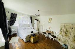 Casă de oaspeți Țigău, Casa de vacanță The Old Bath House