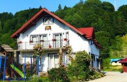Accommodation Radnai-havasok, Cerbu Guesthouse