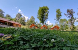 Camping near Sâmbăta de Sus Monastery, Trăisteni Complex