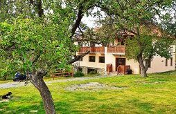 Accommodation Buciumi, Ica Agrotourism  Guesthouse