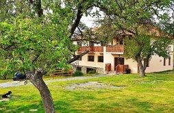 Cazare Valea Drăganului cu Vouchere de vacanță, Pensiunea  Agroturistică Ica
