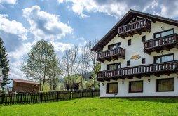 Villa Felsőmoécs (Moieciu de Sus), Alex Villa