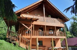 Accommodation Bacău county, Flower Bell Guesthouse