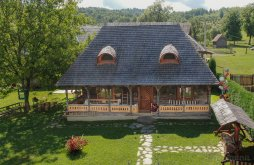 Accommodation near Ocna Șugatag Salt Lake, Susani Guesthouse