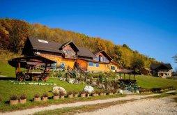 Accommodation Zărnești, Dumbrava Ursului 2