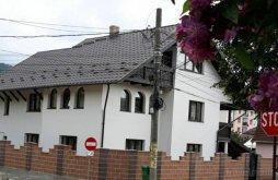 "Vacation home International Rock Music Festival ""Bucovina Rock Castle"" Suceava, Coca Guesthouse"