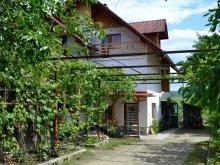 Casă de oaspeți județul Mureş, Casa Madaras