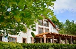 Apartment near Pearl of Szentegyháza Thermal Bath, Vagas B&B