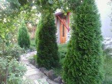 Accommodation Valea Cerbului, Péter Annamária & Géza Guesthouse