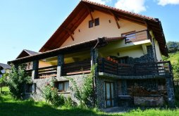 Accommodation Maramureş county, Bellavista Guesthouse