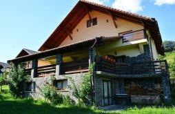 Szállás Borsabánya (Băile Borșa), Voucher de vacanță, Bellavista Panzió