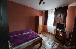 Room for rent near Amusement Park Weekend Târgu-Mureș, Hajnal Guesthouse