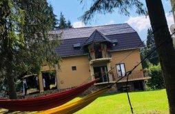 Accommodation Alba county, Suvenirurilor Chalet