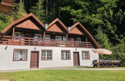 Casă de oaspeți Odorheiu Secuiesc, Casa de vacanță Fontana Erdélyi