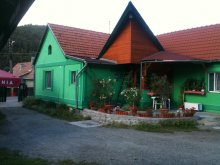 Cazare Chibed, Pensiunea Zöld Laguna