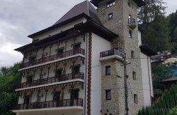 Apartman Moldova, Steinhaus Panzió