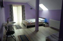 Accommodation Bocșița, Primăvara Guesthouse