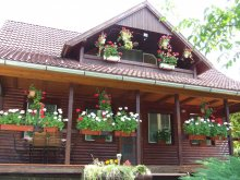 Accommodation Sub Cetate, Orbán Guesthouse