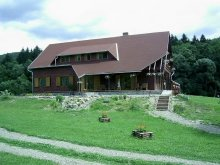 Accommodation Pleșcoi, Csipkés Guesthouse