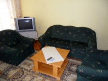 Accommodation Vonyarcvashegy, Szőlő Guesthouse