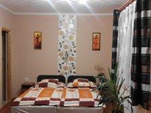 Cazare Sajómercse, Apartament Kormos