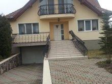 Casă de oaspeți județul Mureş, Casa de oaspeți Balázs