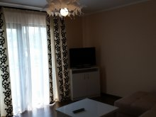 Accommodation Trebeș, Carmen Apartment