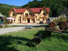 Accommodation Huzărești, Dariana Guesthouse