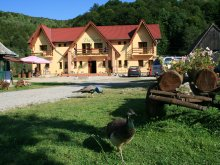 Accommodation Lake Fântânele, Dariana Guesthouse