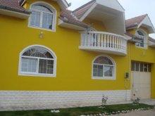 Vilă Mocrea, Vila Pietroasa