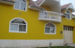 Villa Szokány (Săucani), Pietroasa Villa