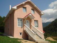 Villa Mustești, Fabiale Vila