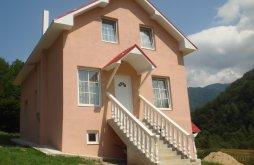 Villa Tărcăița, Fabiale Villa