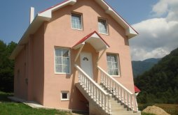 Villa Zece Hotare, Fabiale Villa